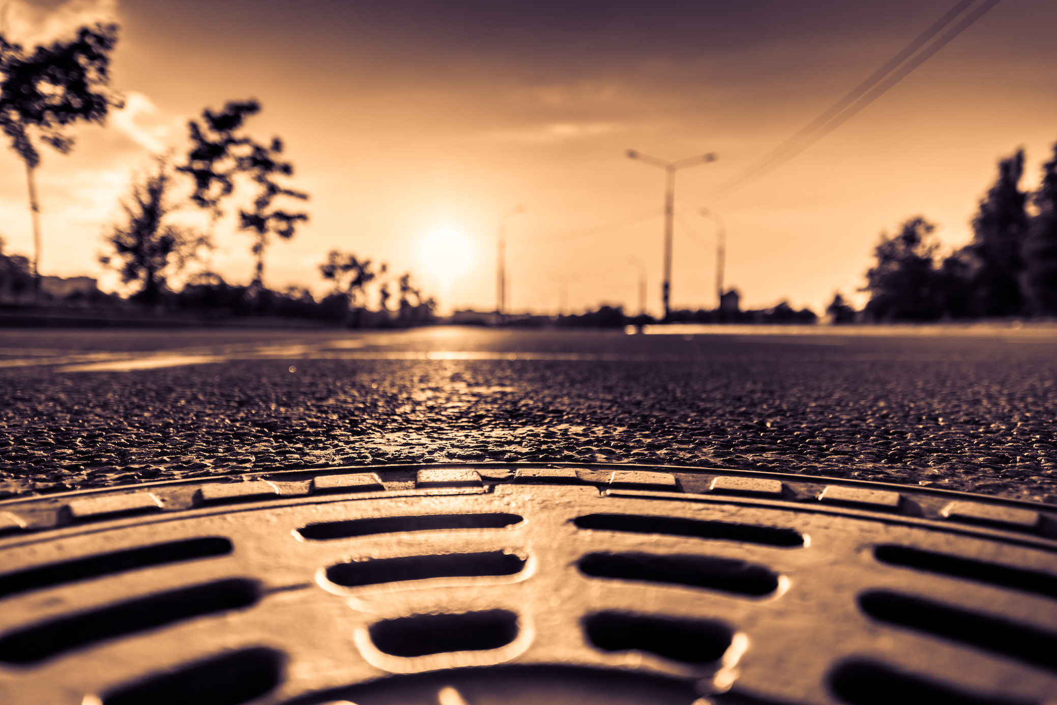 Which is better for the environment, sewers or septic systems? The subject might not be eagerly embraced, but it's a good question to ask.