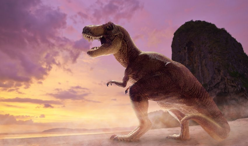 The sheer size and weight of the Tyrannosaurus rex would have made it impossible for the giant dinosaur to run, according to a new study.