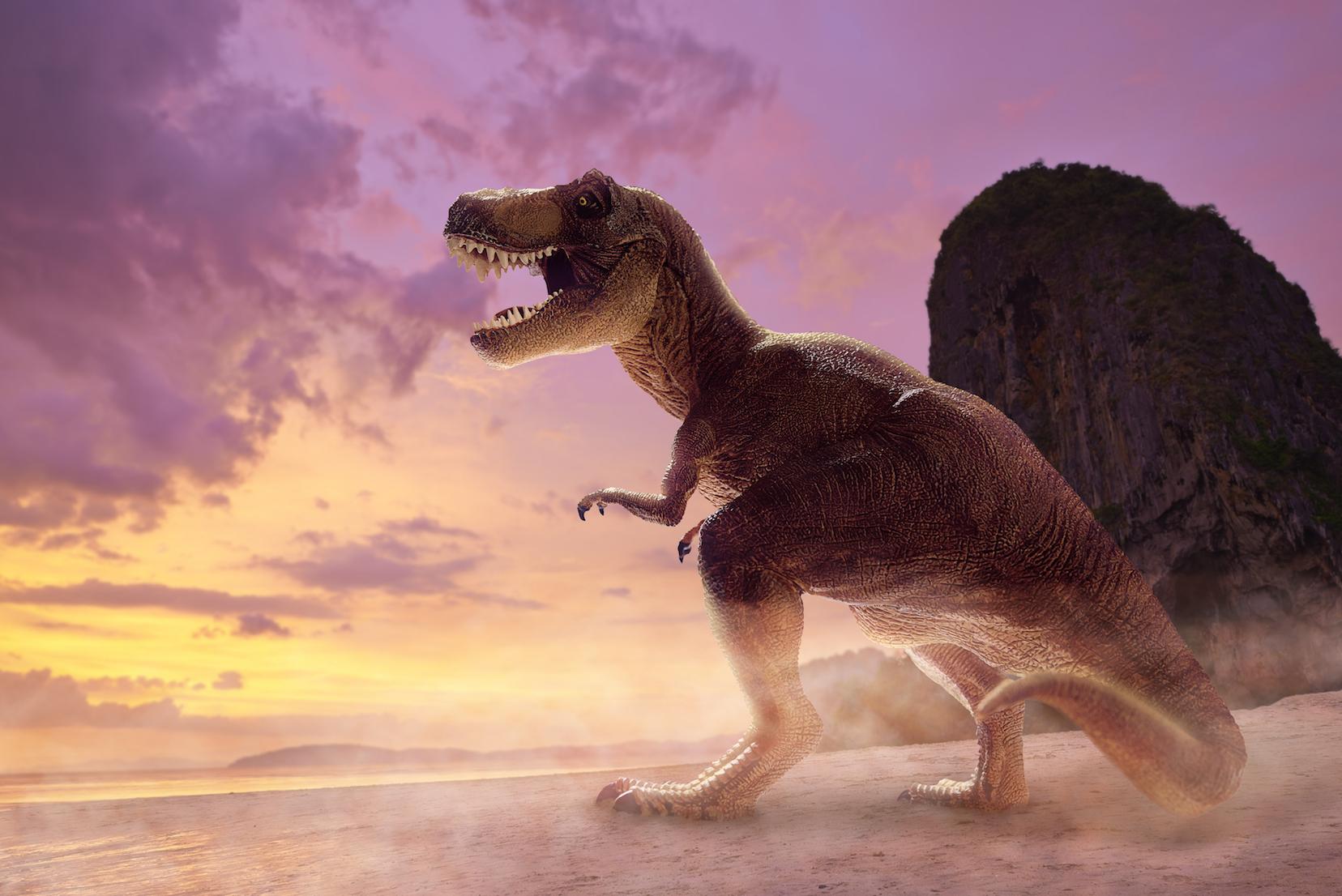 Why the Tyrannosaurus rex was too big to run • Earth.com - photo#33