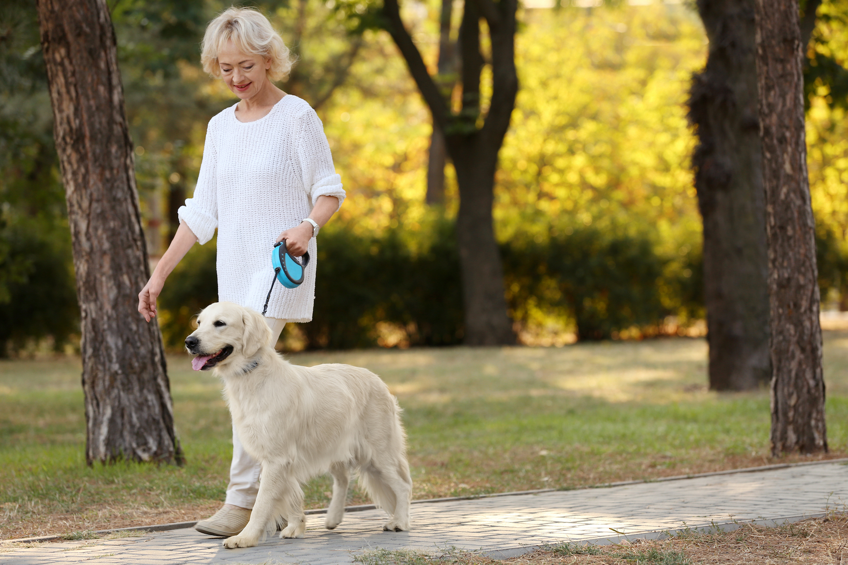 A new study says that owning a dog and walking them regularly had a hugely positive impact on keeping older adults more active.
