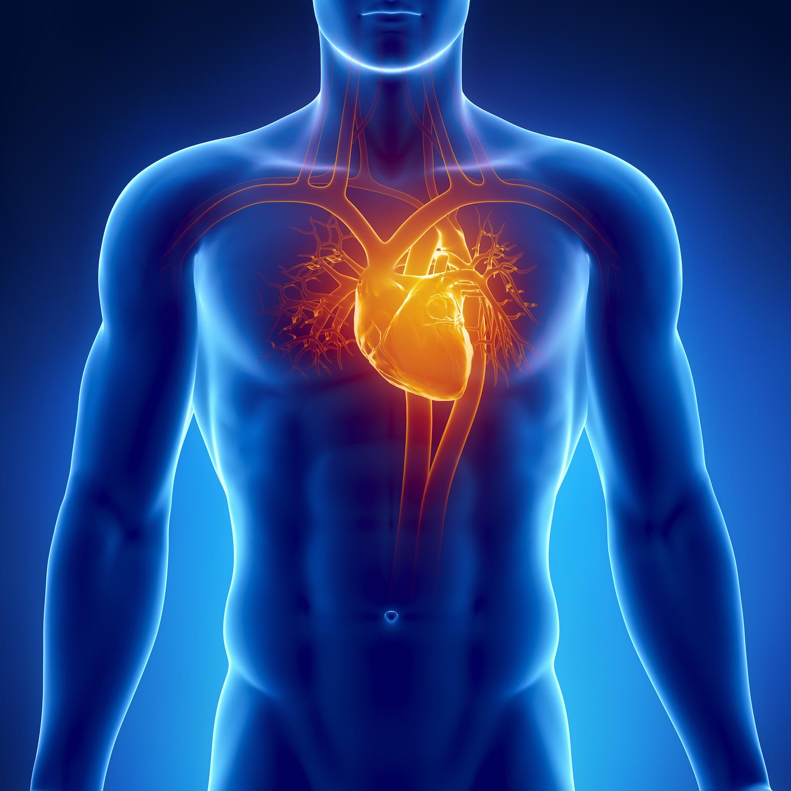 Что нельзя и что можно делать в домашних условиях, если болит сердце 69