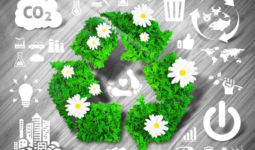 Zero Waste is a trending movement where the goal is to reduce how much waste you bring home and create yourself.