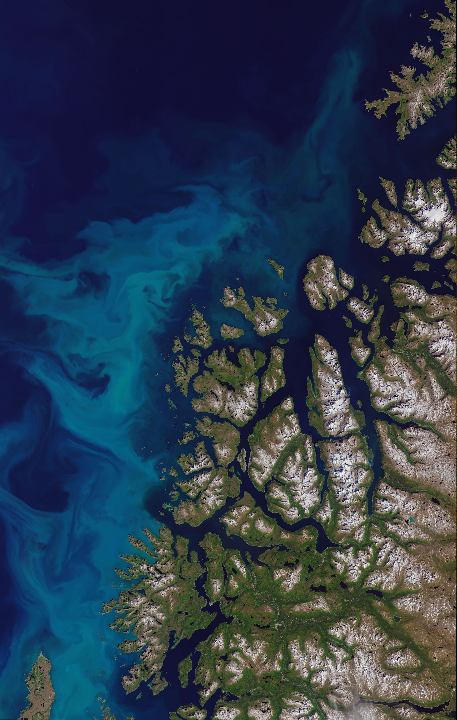 Today's Image of the Day comes thanks to the NASA Earth Observatory and features a look at a phytoplankton bloom in the Norwegian Sea.