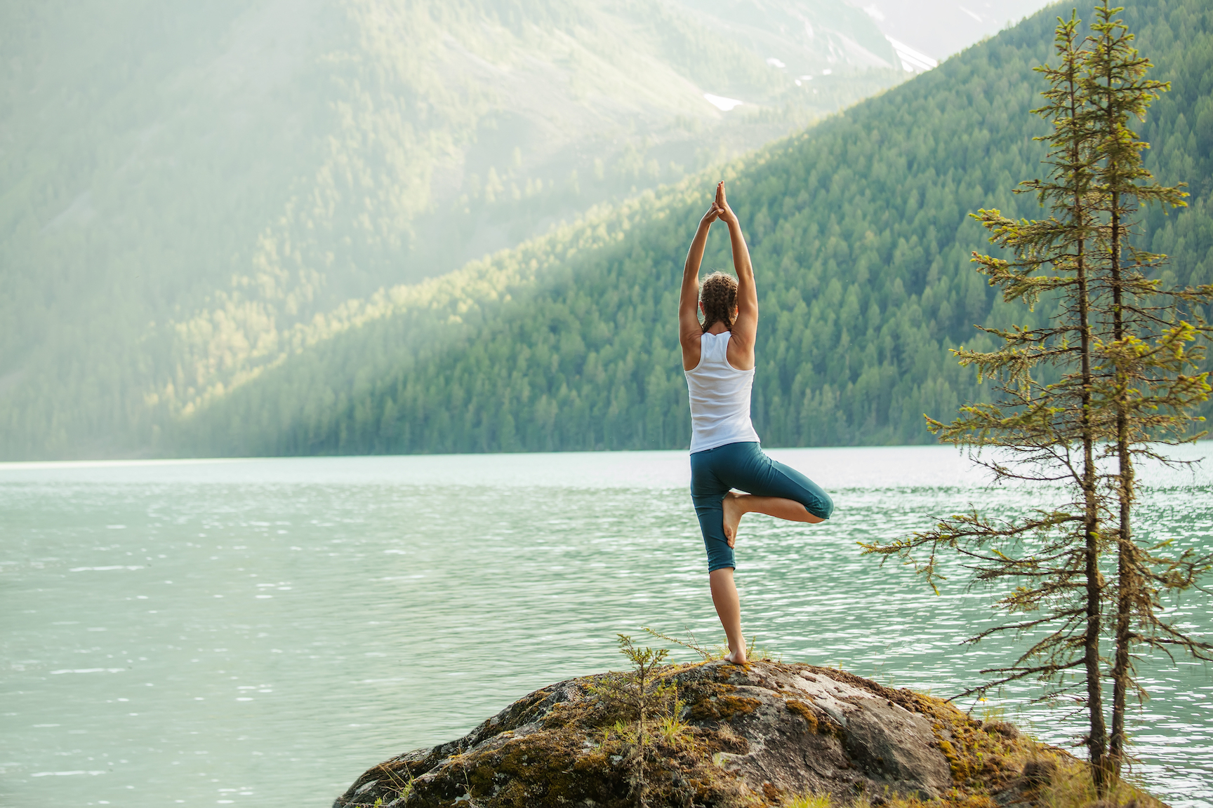 A large number of studies have independently investigated the effects of yoga as an effective therapy for depression.