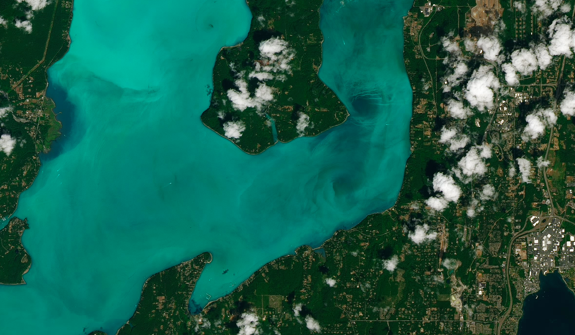 Today's Image of the Day comes thanks to the NASA Earth Observatory and features a look at a plankton bloom in Washington's Hood Canal.