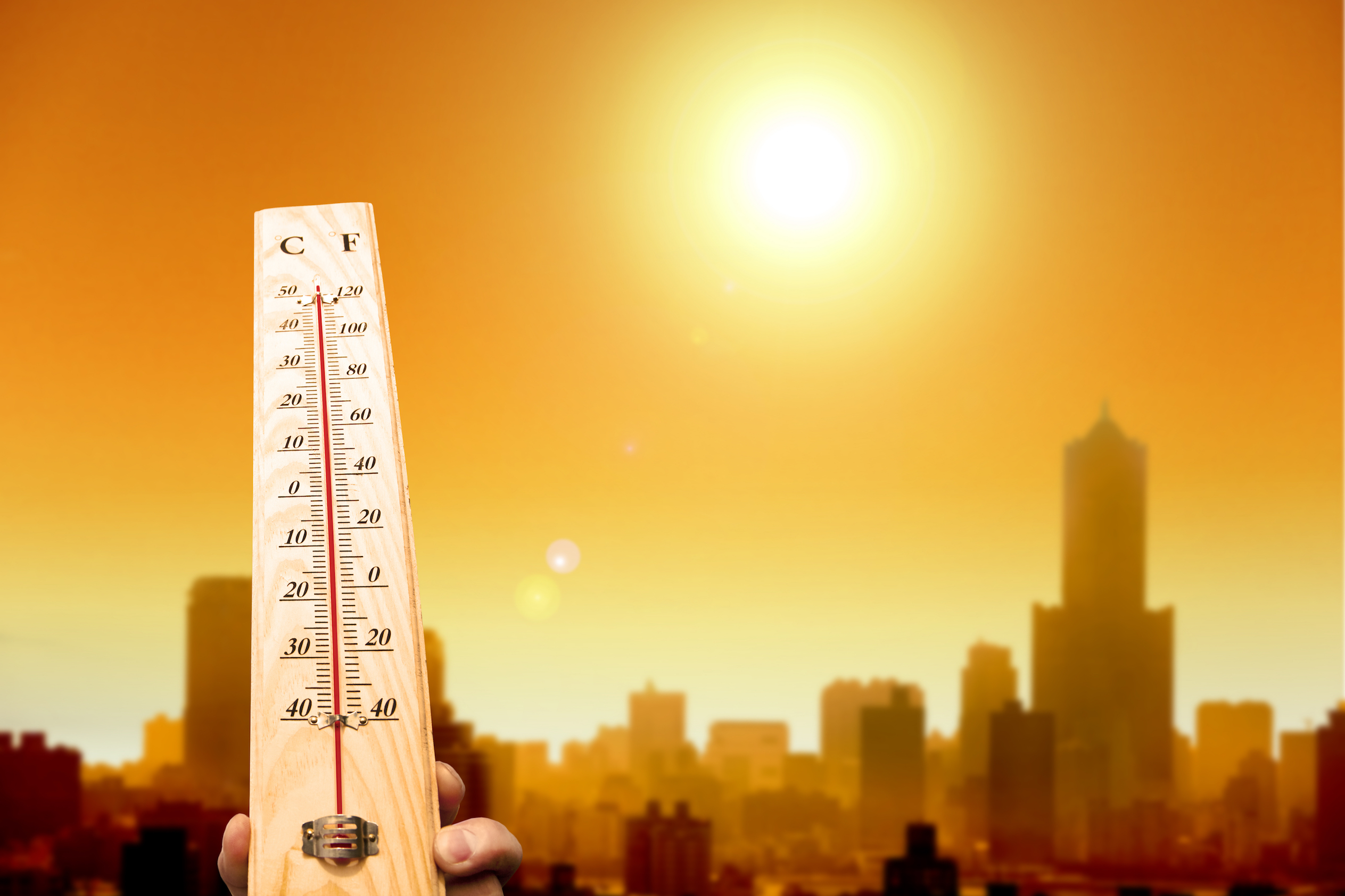 According to the latest report, 2016 marks the hottest year on record, breaking 2015's record high temperatures.