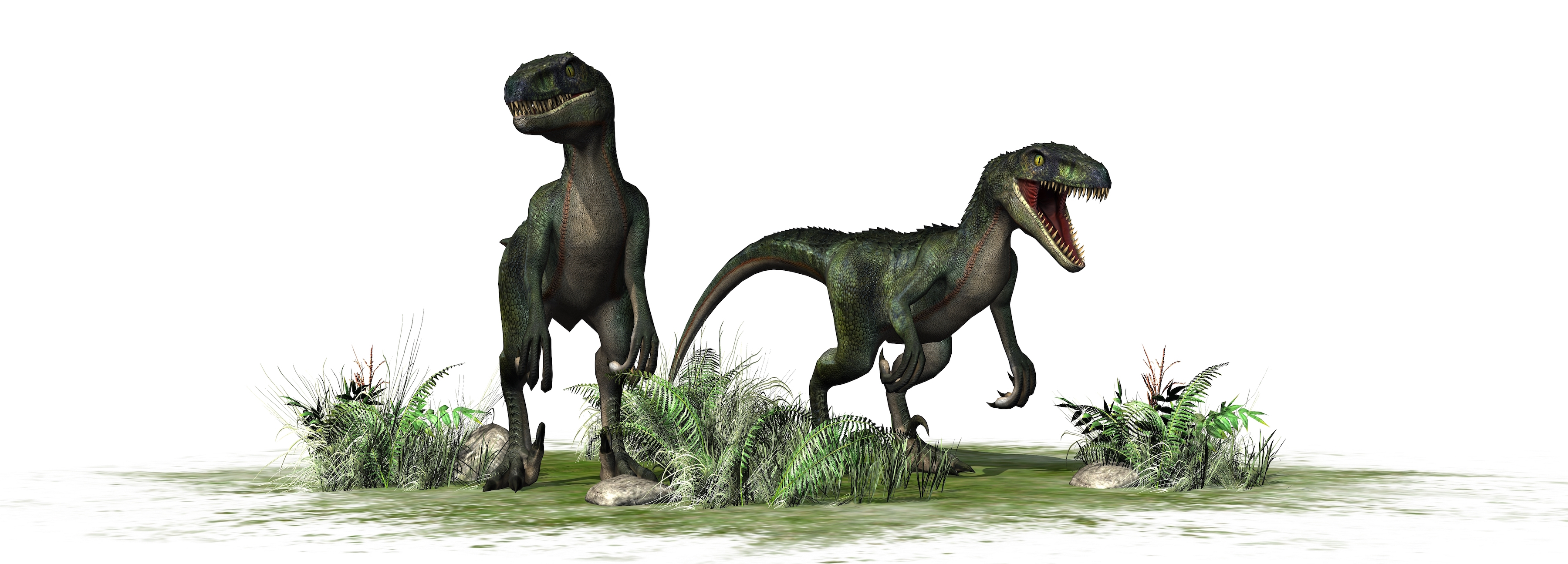 """Researchers have determined the dinosaur that may be the """"missing link"""" between herbivorous and carnivorous dinosaurs."""