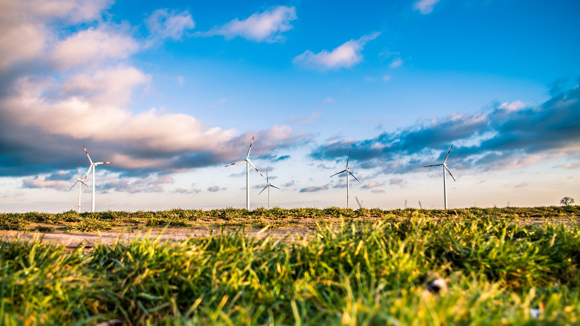 A new roadmap outlines transitioning 139 countries to using 100 percent renewable energy sources by the year 2050.
