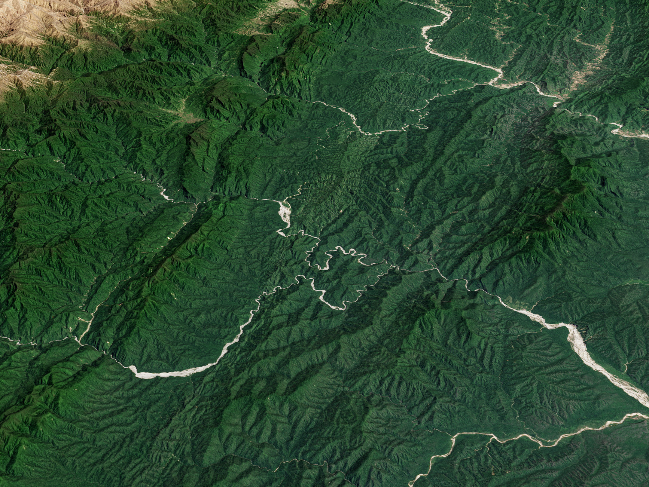 Today's Image of the Day comes thanks to the NASA Earth Observatory and features a look at the Baritú National Park in Argentina.