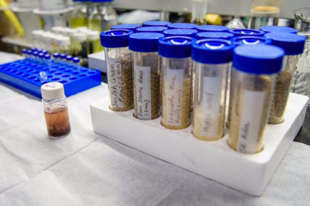 From waste materials such as wood chips and corn cobs, University of Delaware researchers are extracting plant sugars that can replace petroleum in the manufacture of thousands of consumer products.