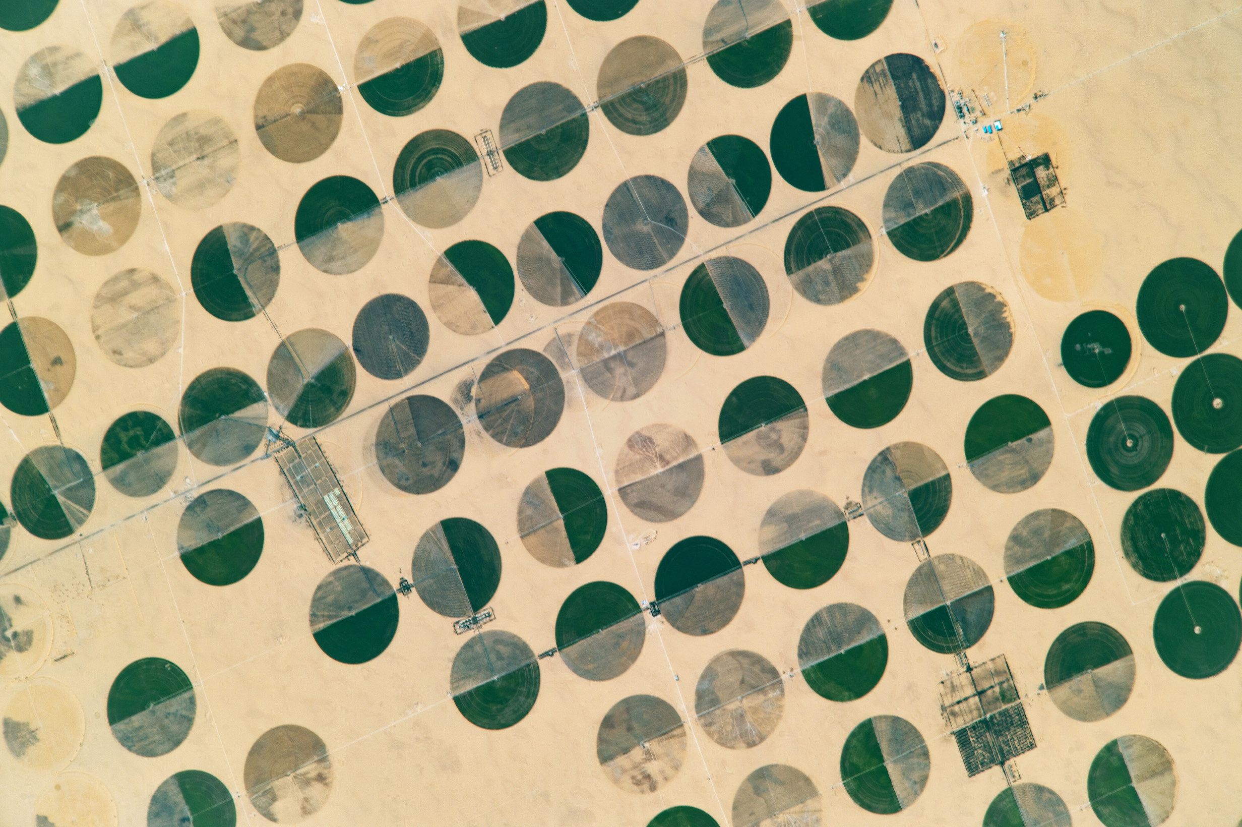 Today's Image of the Day comes thanks to the NASA Earth Observatory and features a look at crop circles in Sharq El Owainat in Egypt.