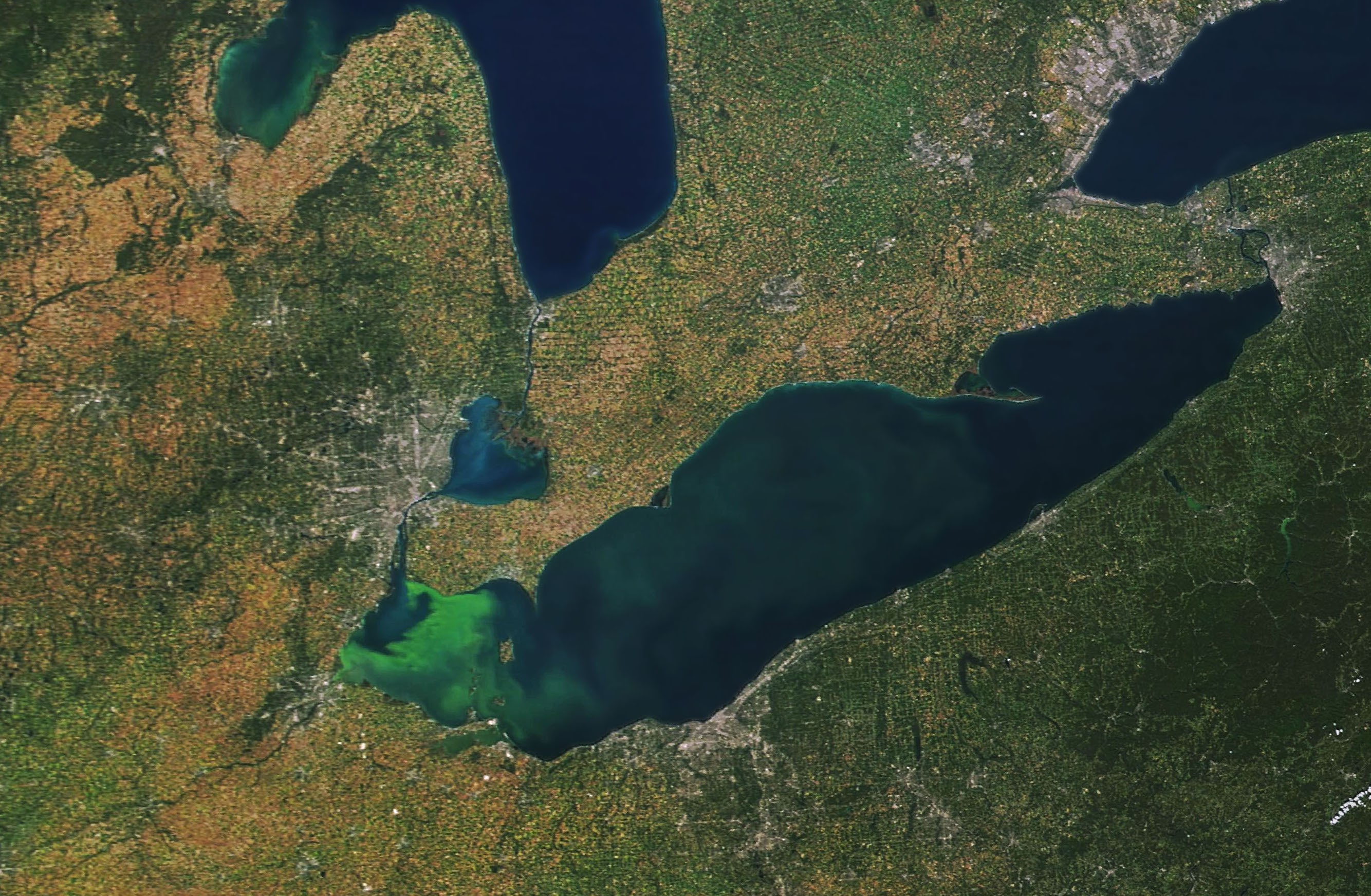 Today's Image of the Day comes thanks to the NASA Earth Observatory and features a look at phytoplankton blooms in Lake Erie.