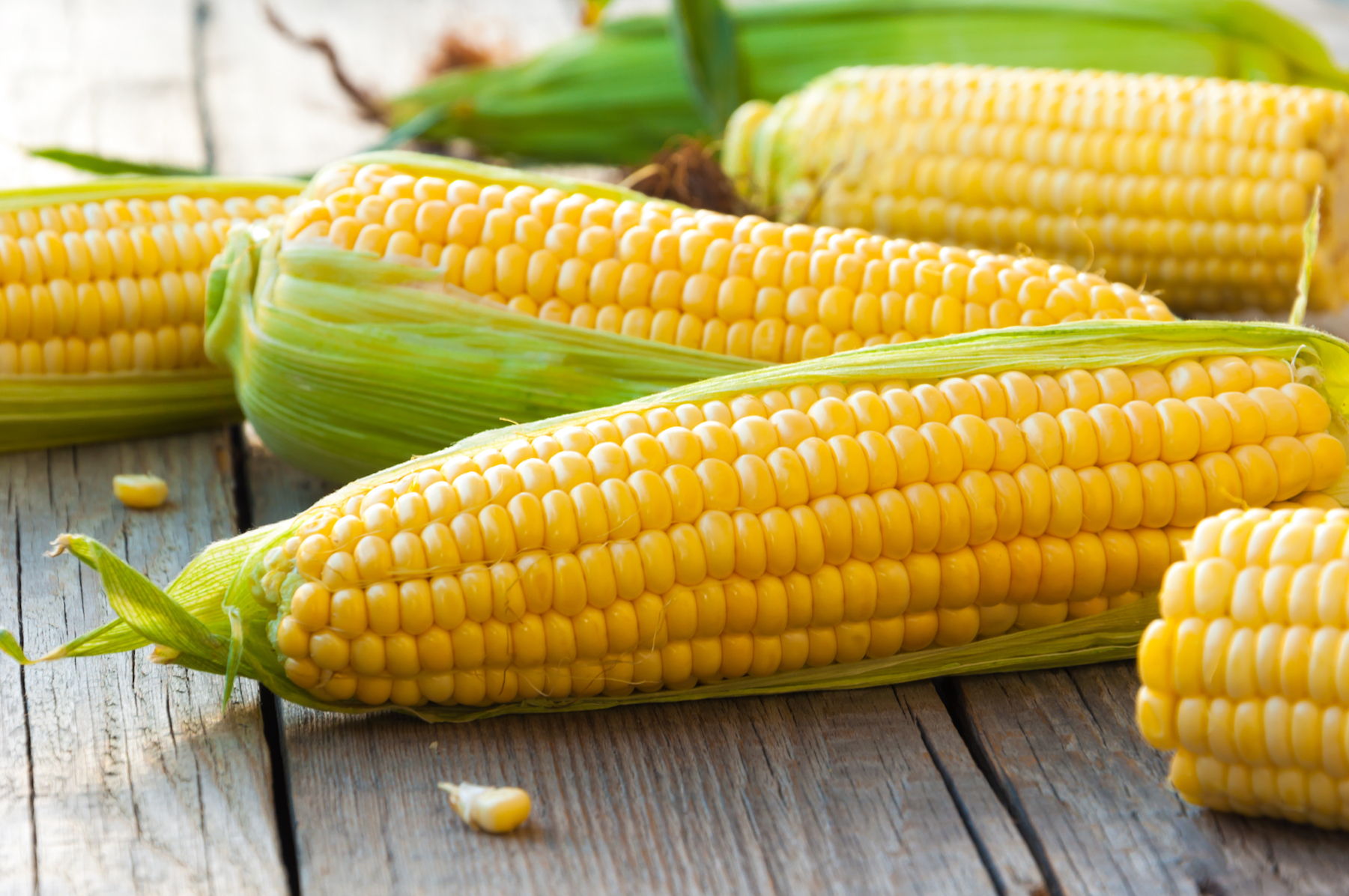 Genetically modifying corn to make it more nutritious could benefit millions of people and reduce agricultural costs.