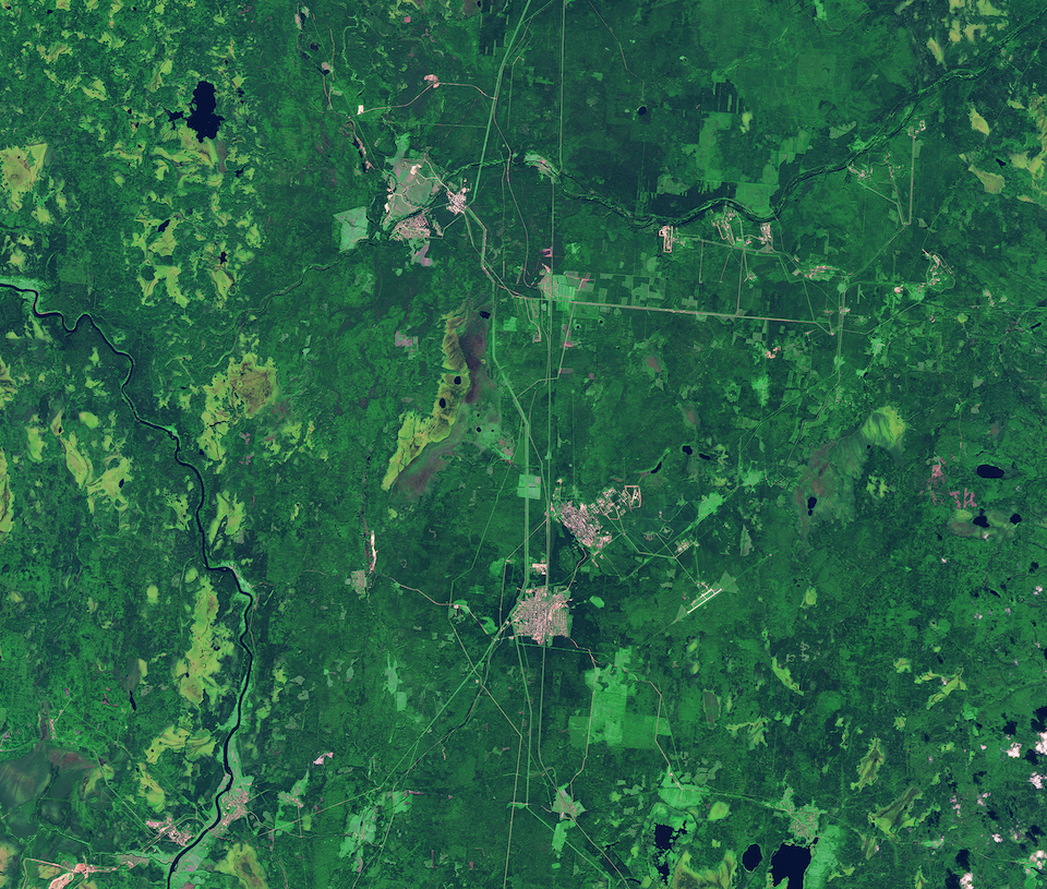 Today's Image of the Day comes thanks to the European Space Agency (ESA) and features a look at Boreal forests in Plesetsk, Russia.