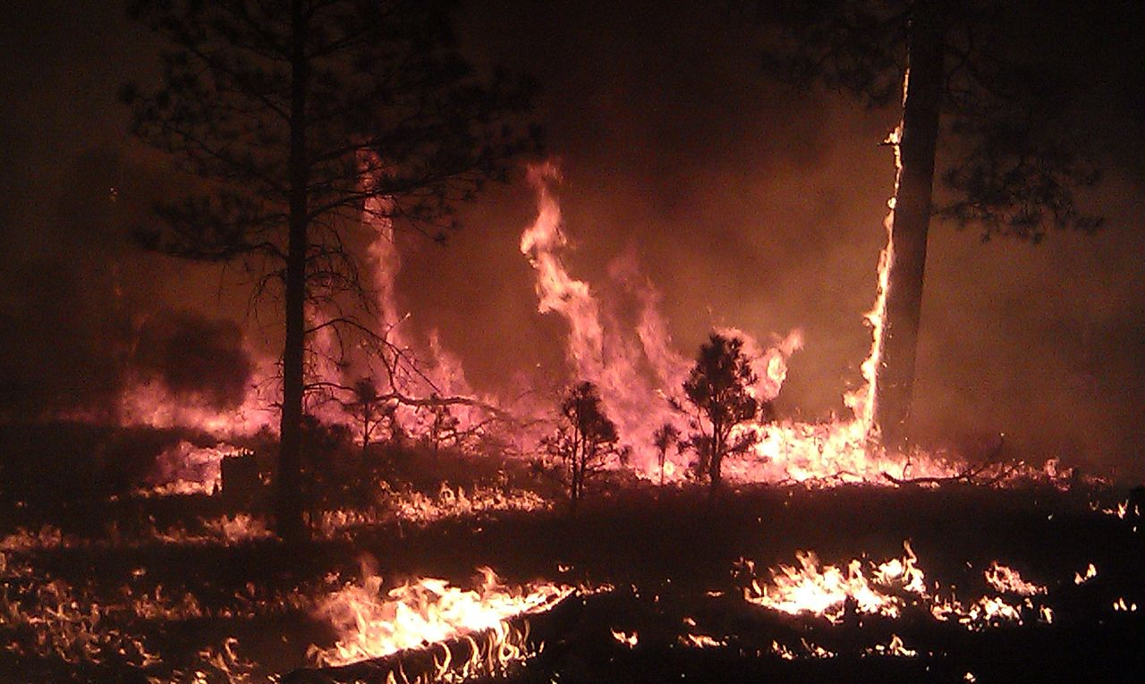 Taylor Complex Fire