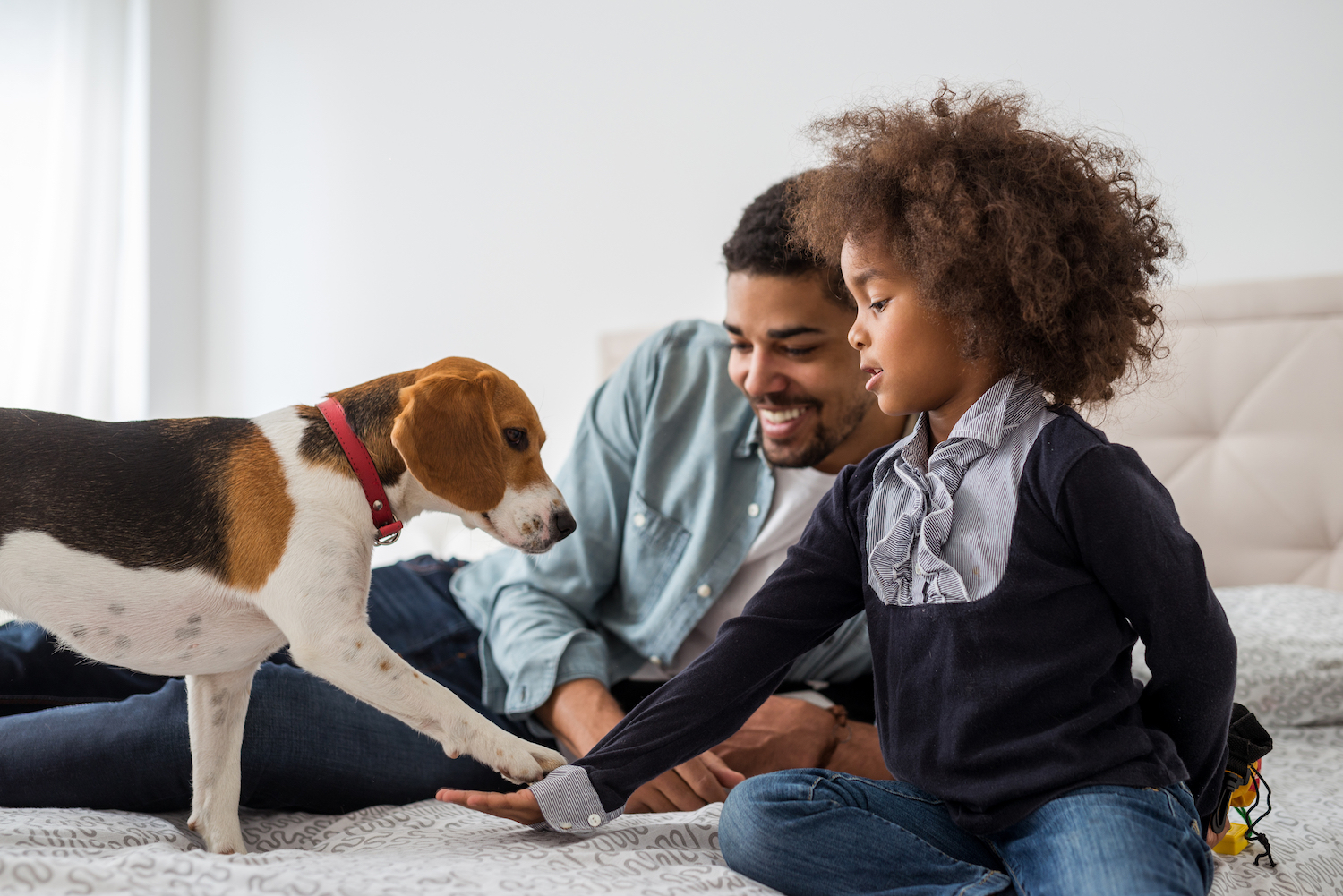 Two new studies have found that the presence of a dog in a child's home may help protect them against eczema and asthma.