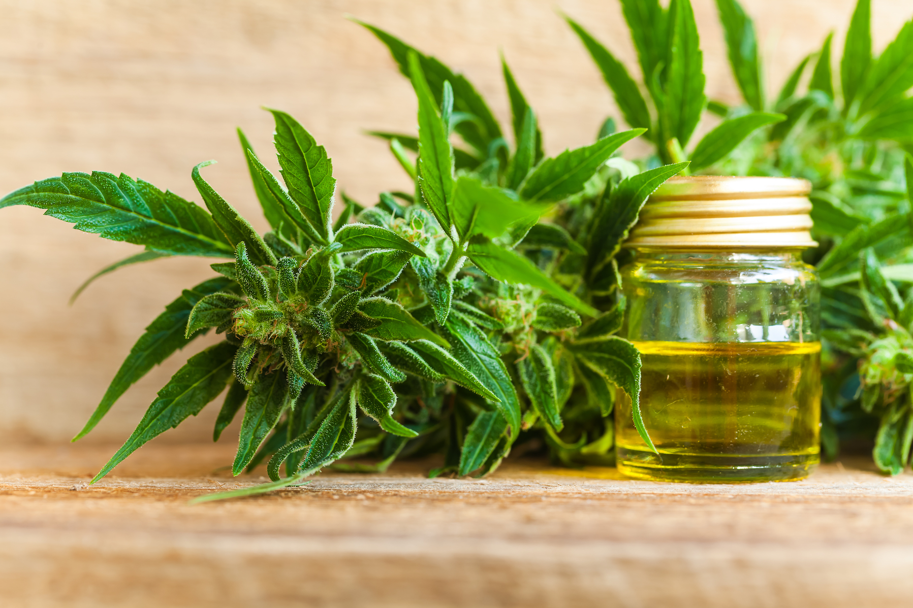 A recent study has found that 70 percent of all cannabidiol products that are sold online are not labeled correctly.