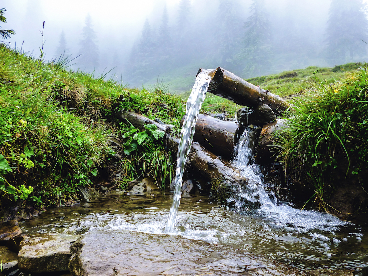 Artificial sweeteners have been found in rural water wells, indicating that the groundwater is contaminated by local septic wastewater.