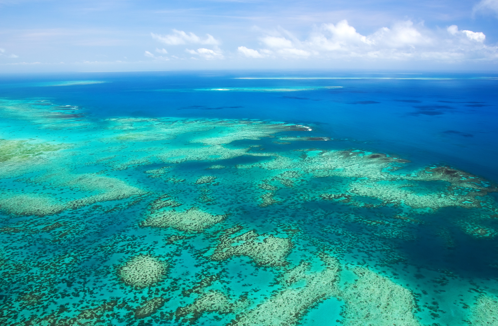 A new study has found that protected zones are beneficial to fish populations along the Great Barrier Reef.