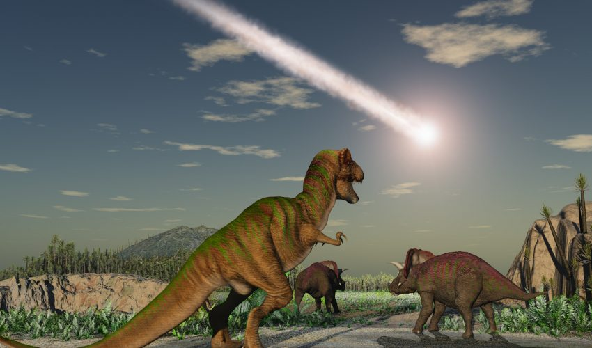 Experts have now determined that if the asteroid had struck nearly anywhere else, the dinosaurs would have survived.