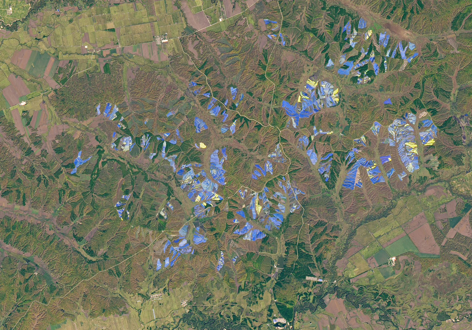 Today's Image of the Day comes courtesy of the NASA Earth Observatory and features a look at ginseng farms in northern China.