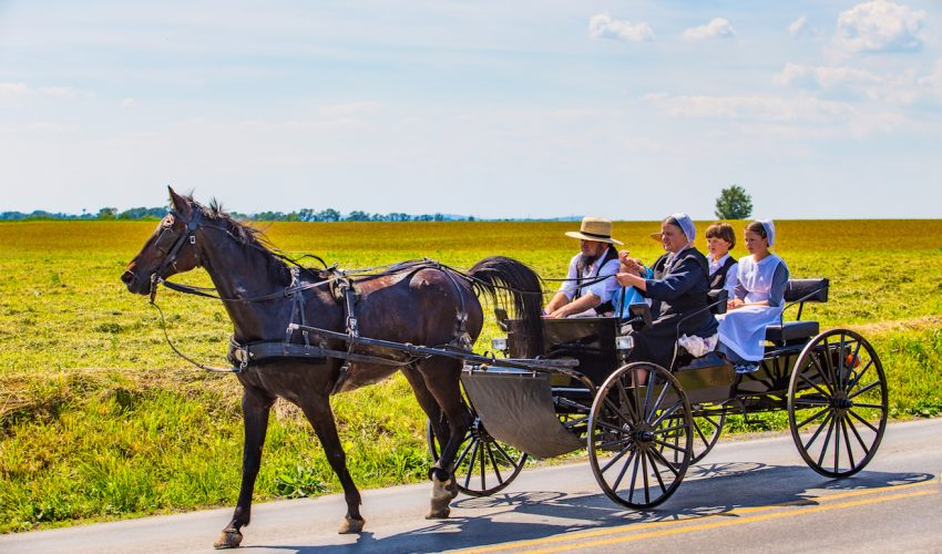 Image result for amish people