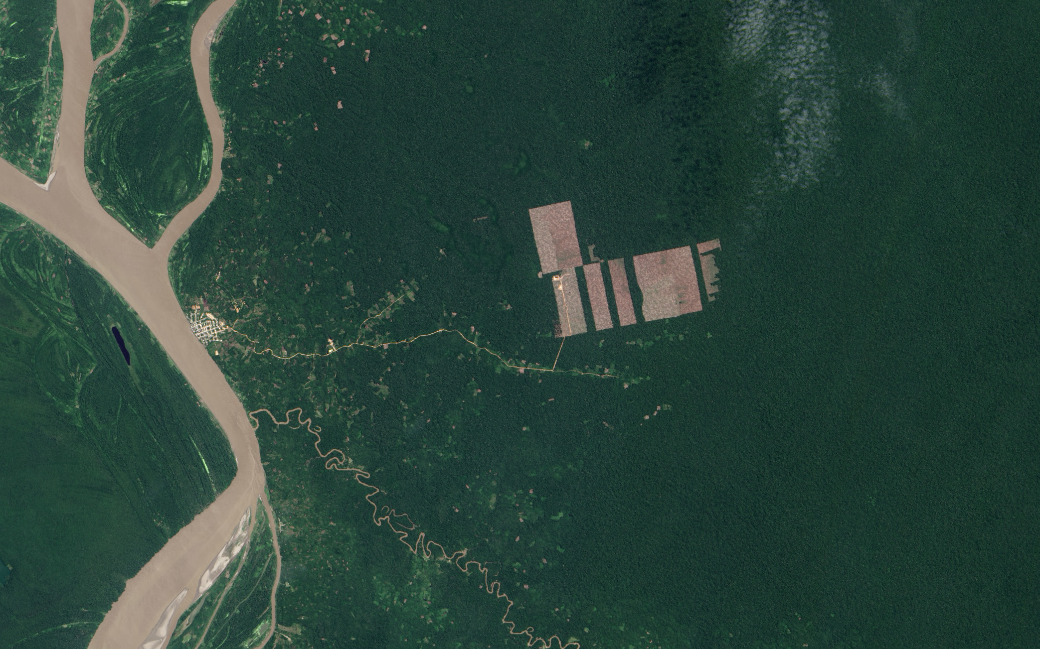 Today's Image of the Day comes courtesy of the NASA Earth Observatory and features a look at deforestation in the forests of Peru.