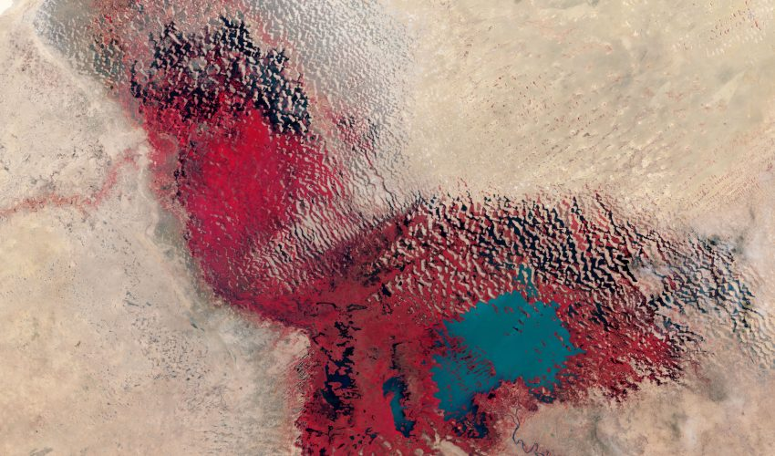 Today's Image of the Day comes courtesy of the NASA Earth Observatory and features a look at Lake Chad in central Africa.