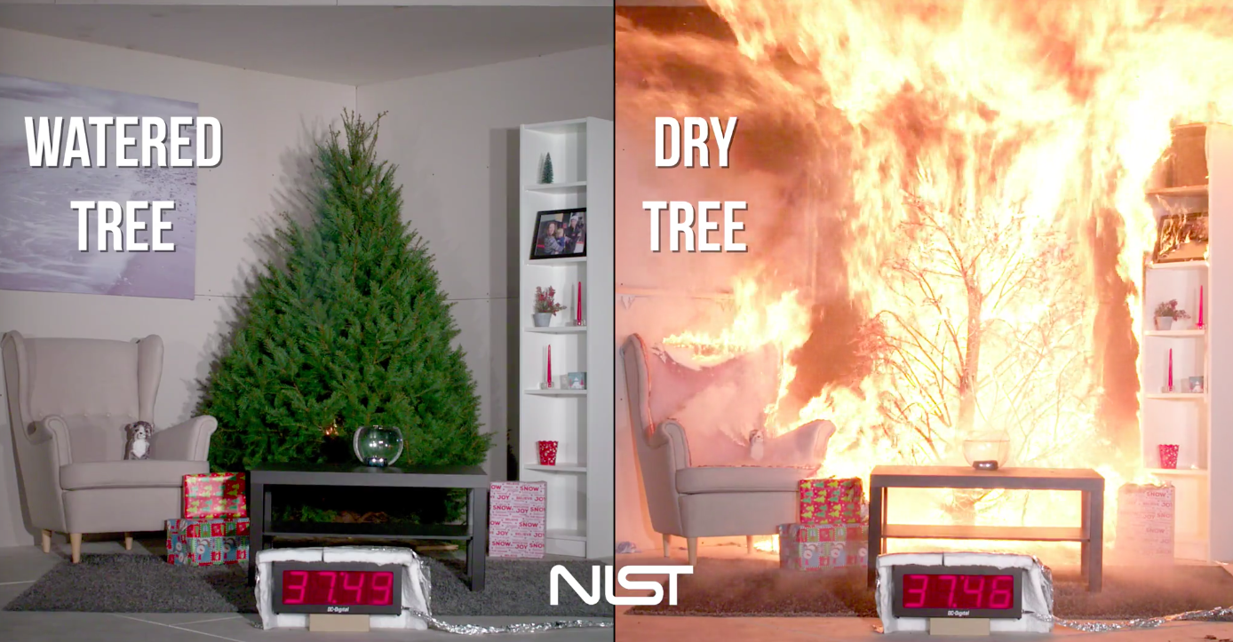 Today's Video of the Day comes from the National Institute of Standards and Technology and demonstrates why it's so important to water your Christmas tree.