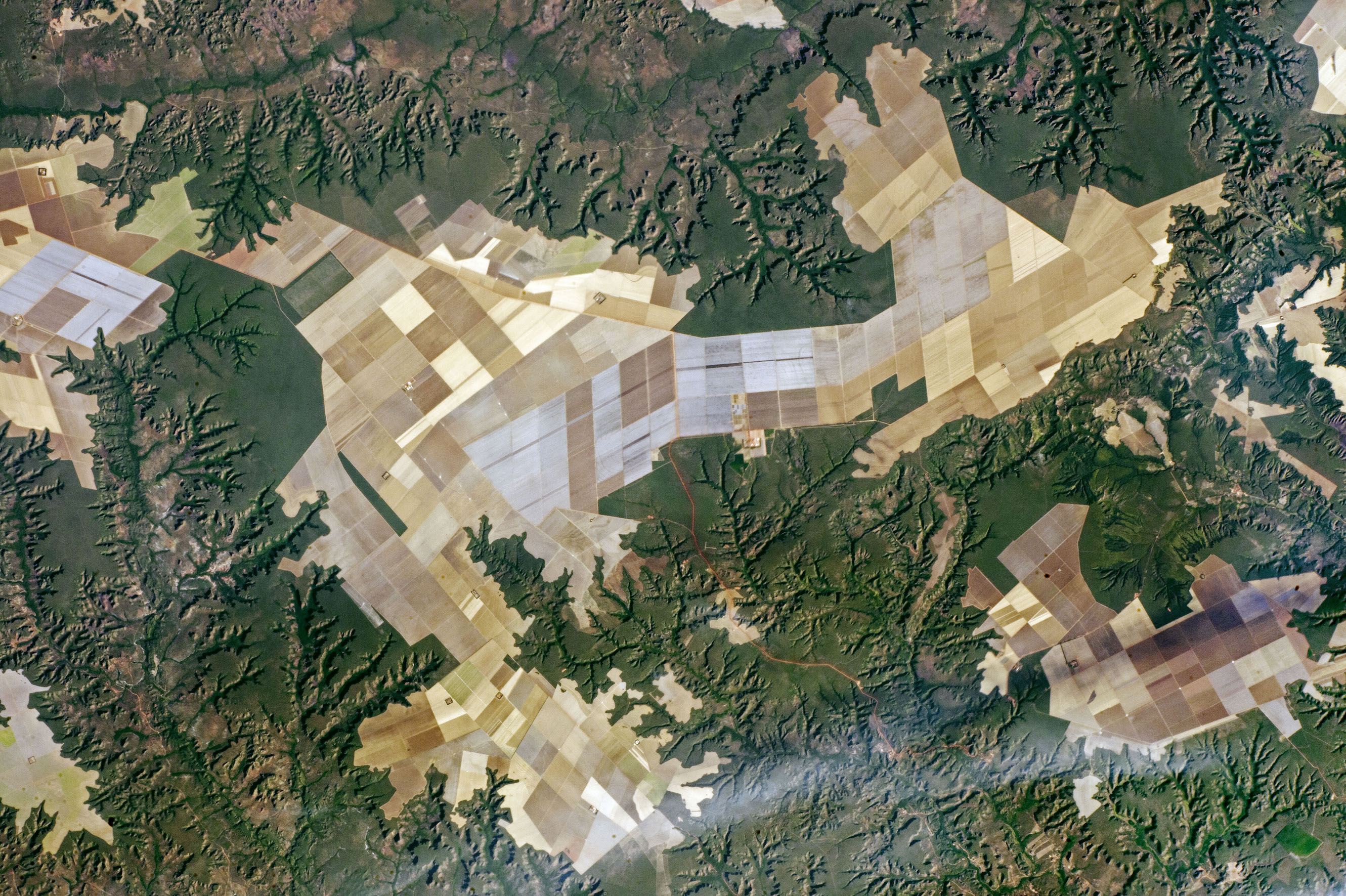 Today's Image of the Day comes courtesy of the NASA Earth Observatory and features a look at sprawling agricultural fields in Brazil.
