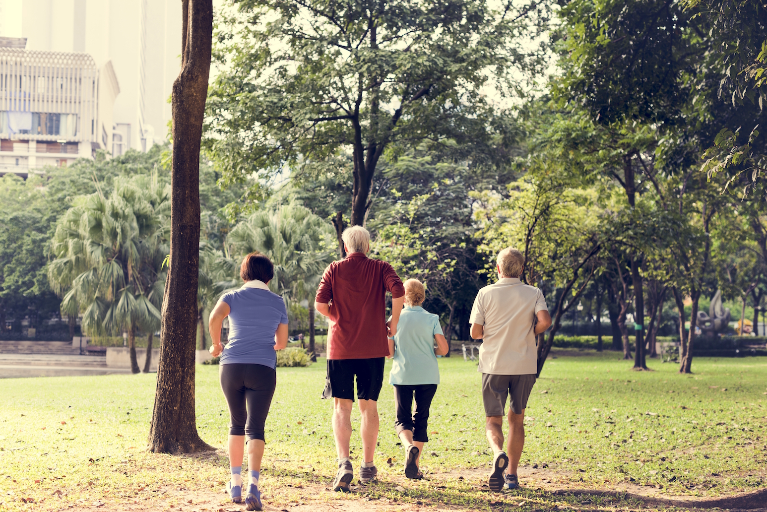 A new study found that seniors lost all benefits of exercise when subjected to short-term exposure to air pollution.