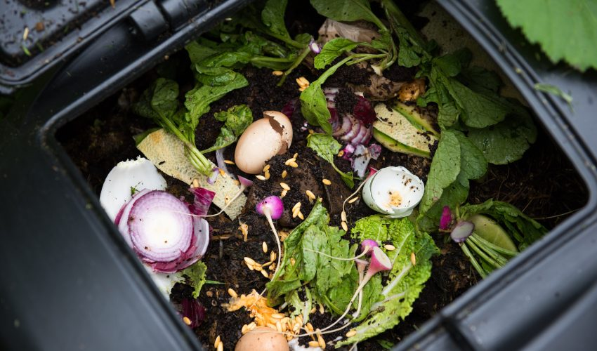 New research has found that composting can lead people to make more eco-conscious decisions in their day to day lives.