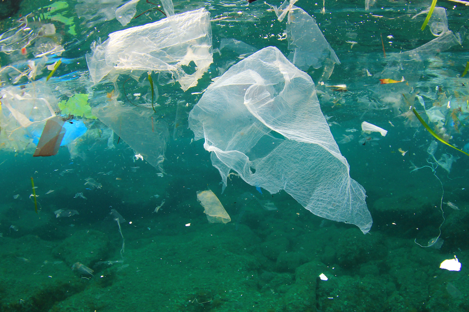 A recent UN meeting in Kenya may prove to be the beginning of the end of unloading plastic waste into the ocean.