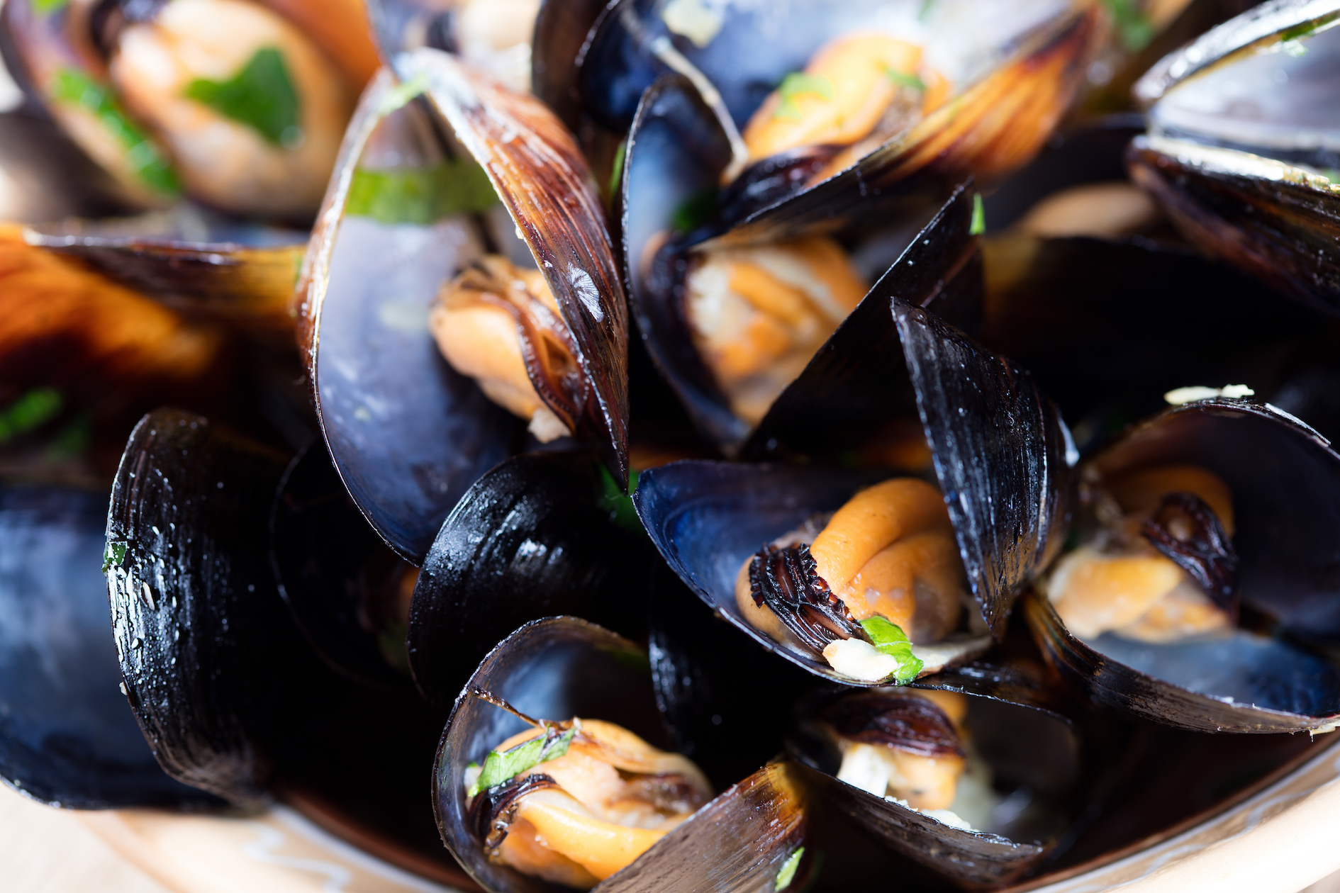 A new study has found that microplastics are contaminating mussels all the way from the European Arctic to China.
