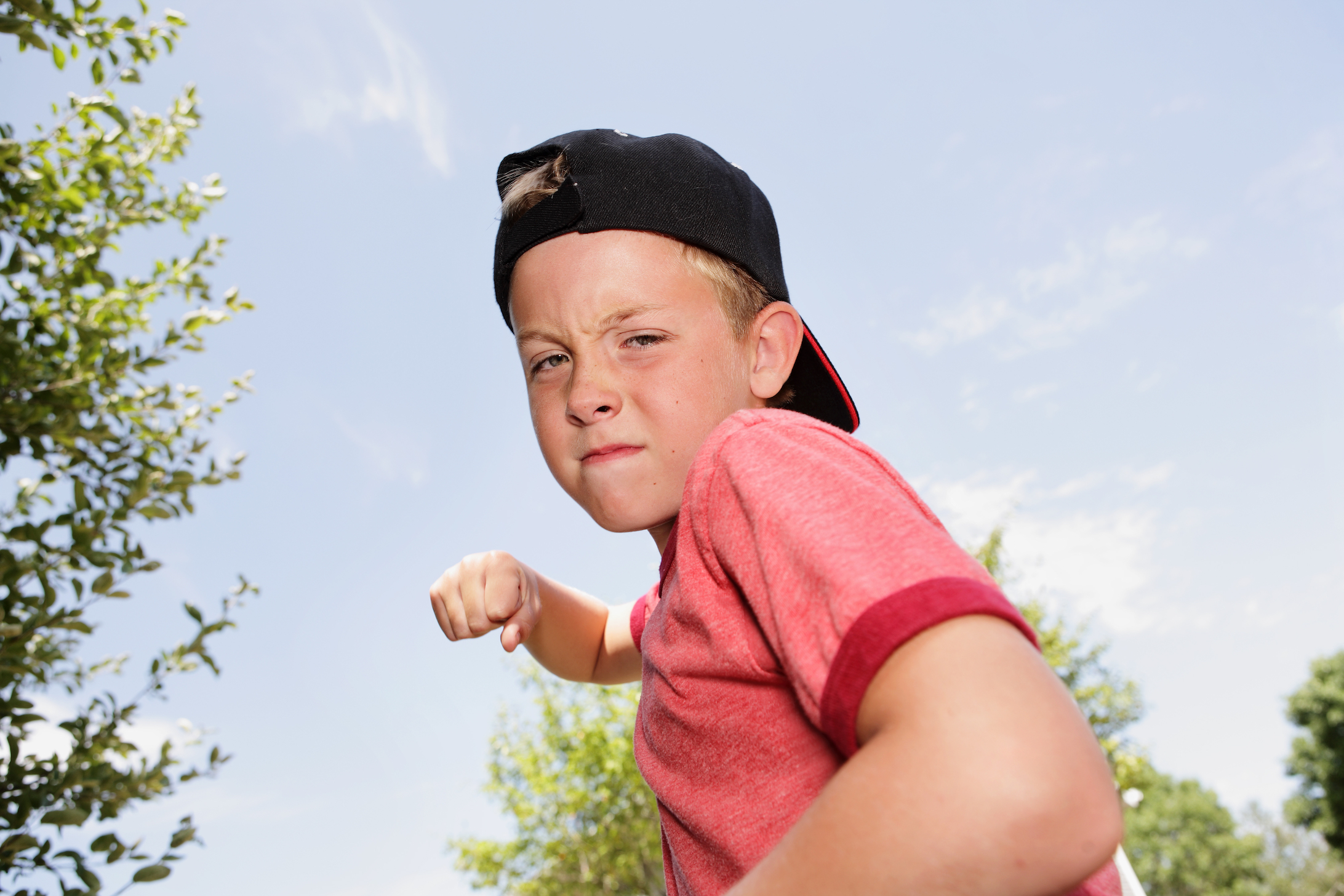 Factors contributing to the emergence of aggressive behavior in children