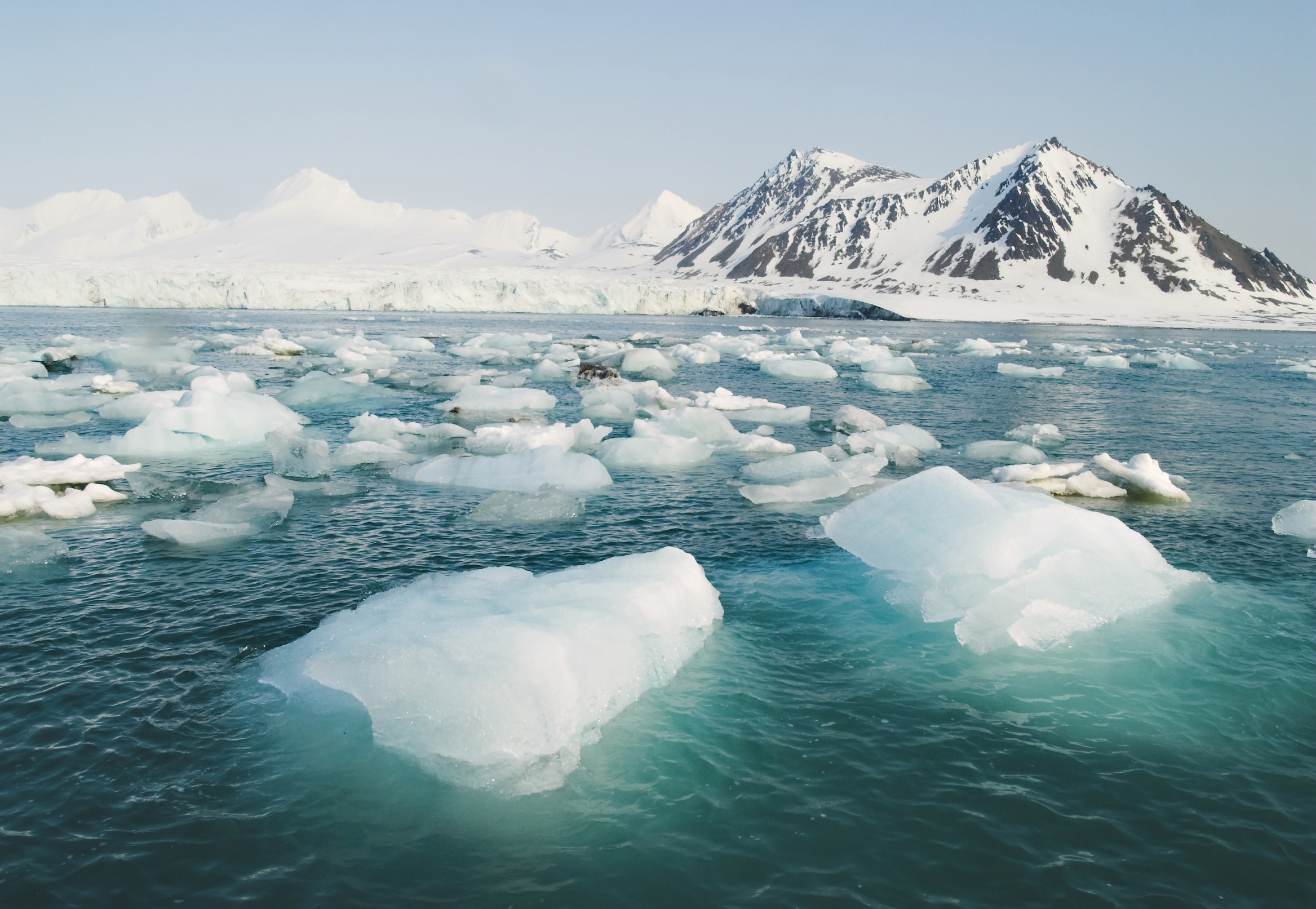 Shelf sediment altering the Arctic Ocean's composition could pose a threat to biological productivity and species collections.