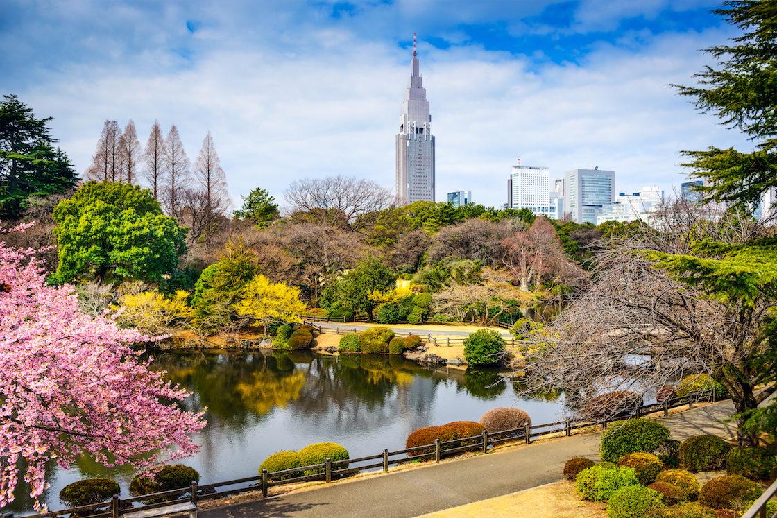 A recent study found that planting just 20 percent more trees in megacities would serve to double the benefits that urban forests provide.