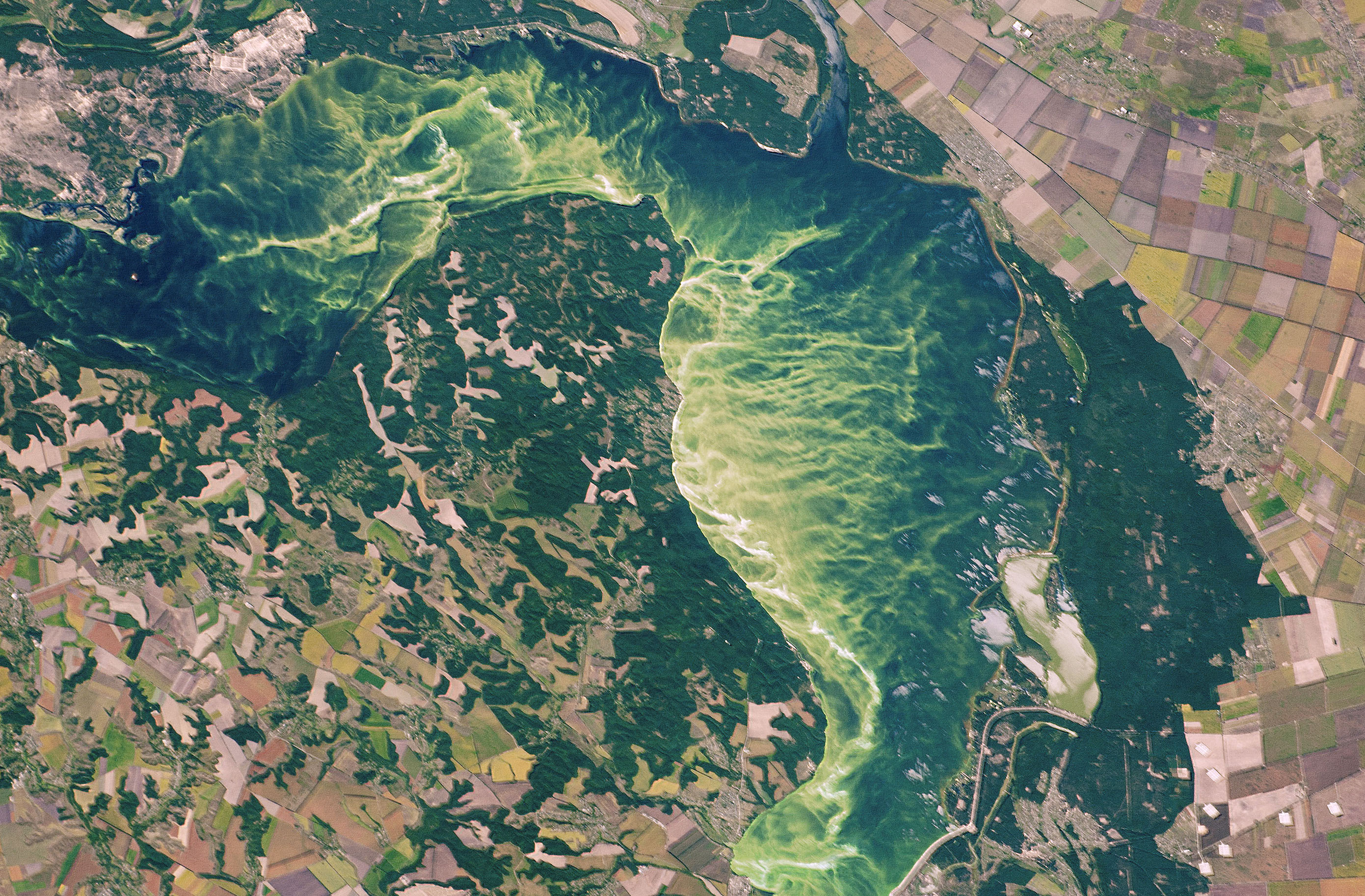 Today's Image of the Day comes from the NASA Earth Observatory and features a look at bright algae blooms and agricultural fields in the central Ukraine.