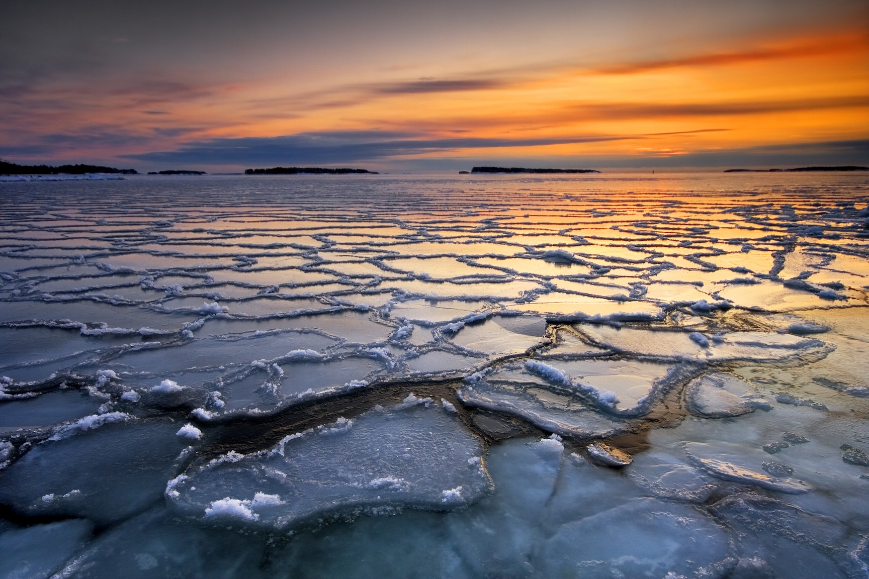 Experts from Aarhus University have discovered that small algae residing under Arctic sea ice have adapted to live in extreme conditions.
