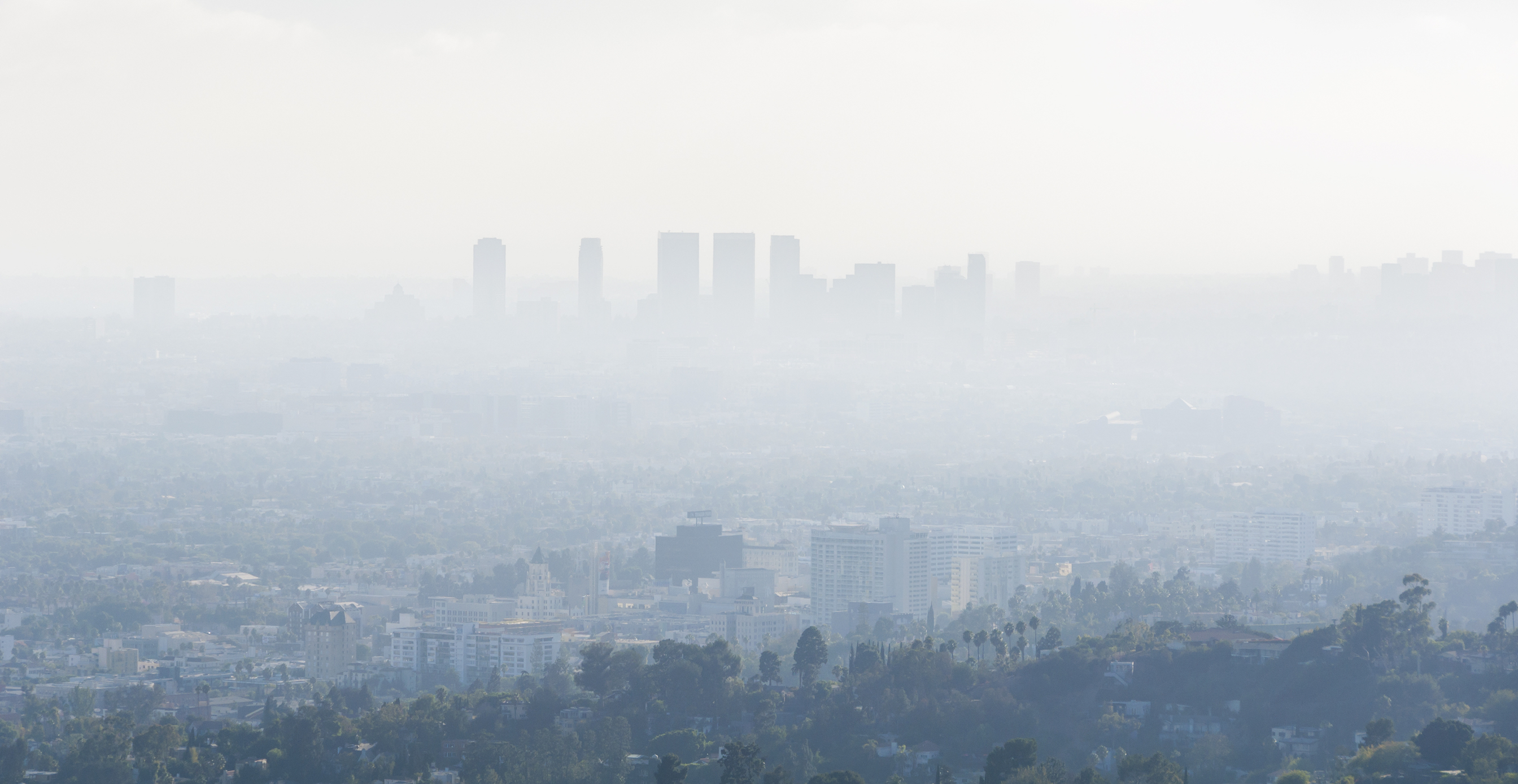 Chemical products such as pesticides, paints, perfumes, and household cleaners are some of the biggest sources of urban air pollution.