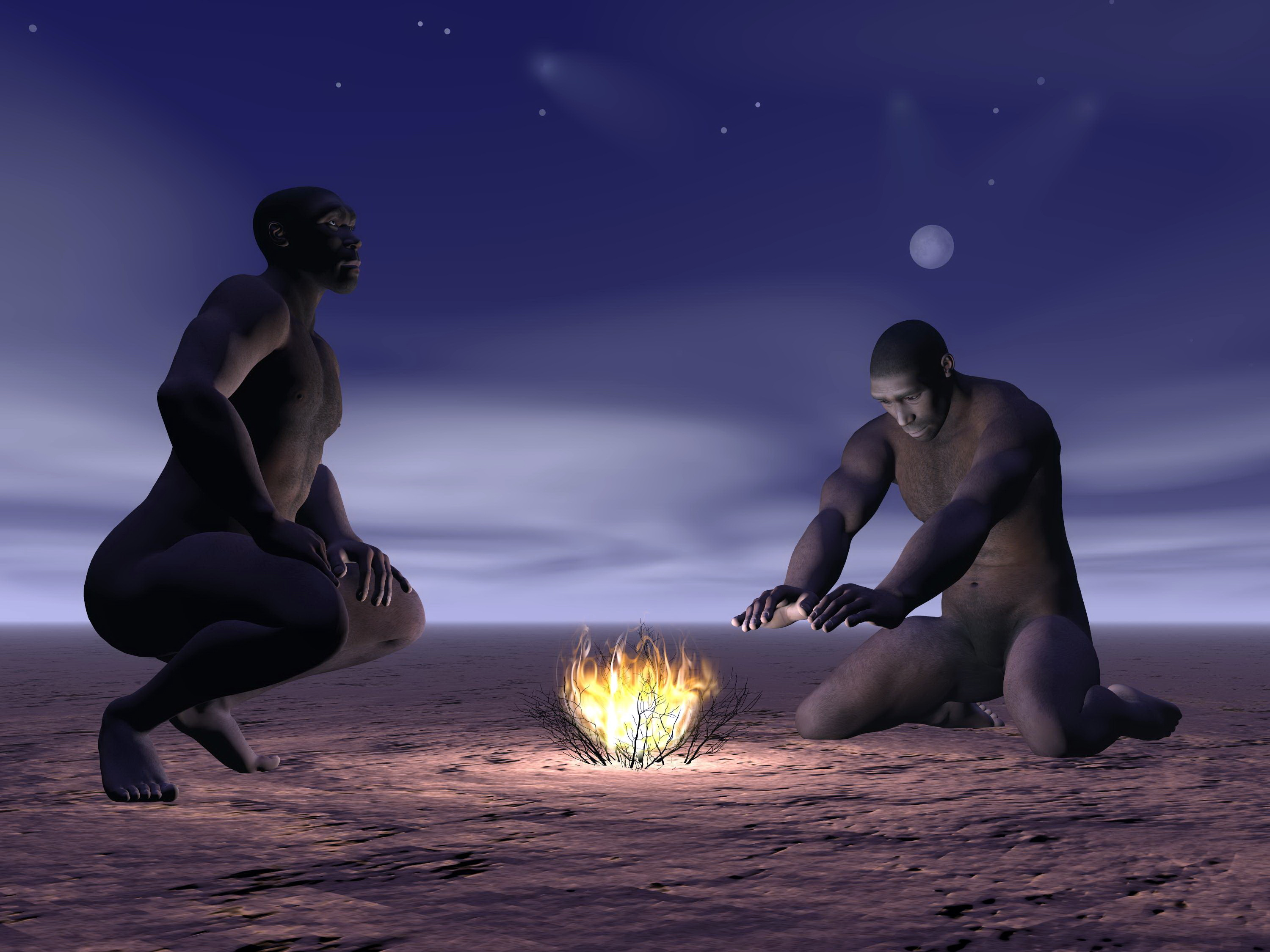 Homo erectus may have had a more refined language than was previously believed, according to a controversial new theory.