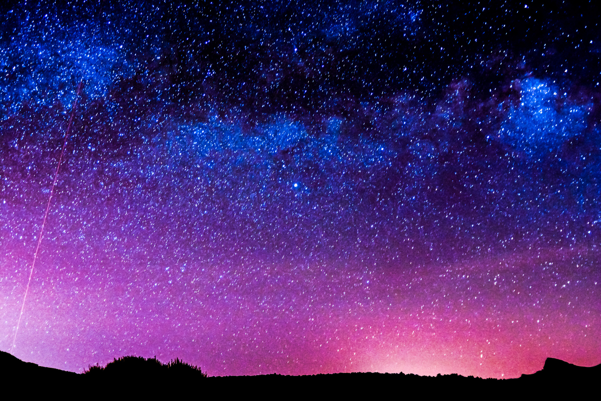 A new study has revealed that many nocturnal animals rely on light from the stars to navigate their way through the dark.