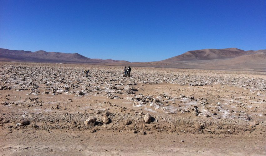 If this desert soil provides a habitat suitable enough for organisms to survive in, the scientists believe there is a great potential for life on Mars.