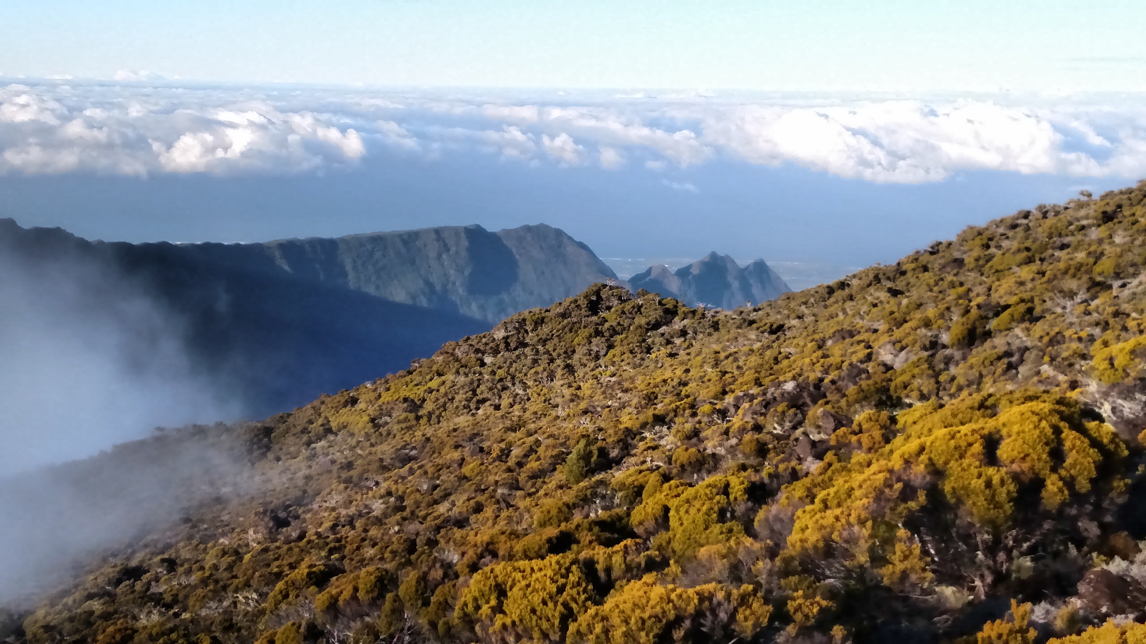 Researchers used isotopic data to reveal the evolutionary timeline of the Reunion Islands was impacted by the formation of early Earth.