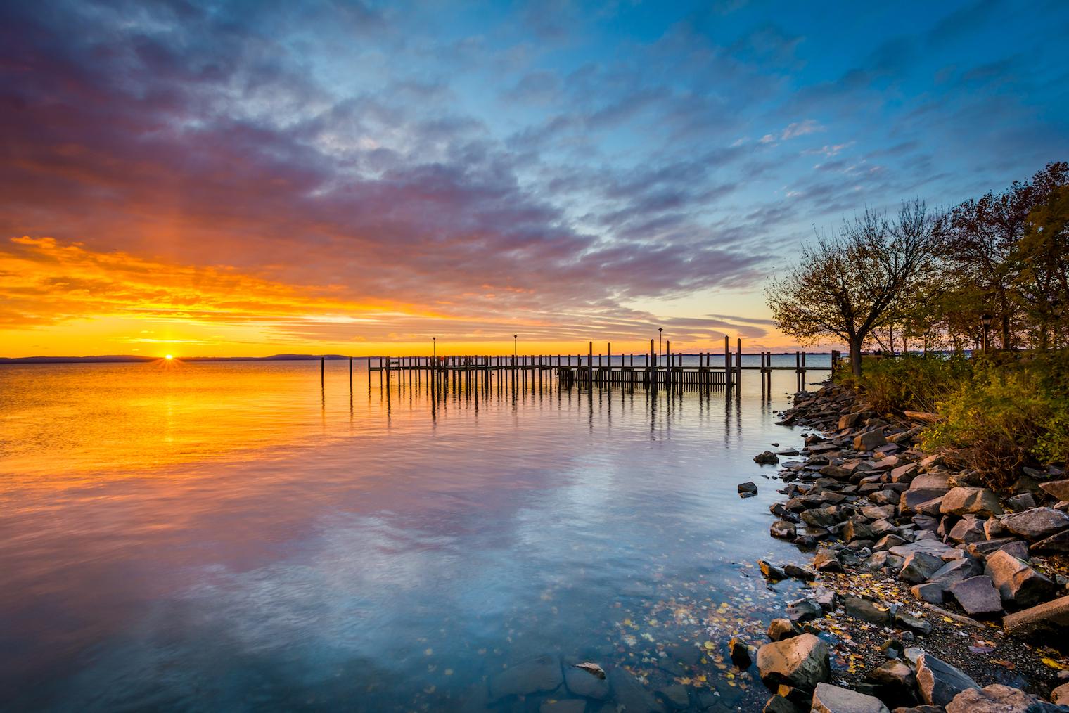 chesapeake bay experiencing remarkable habitat recovery  u2022 earth com