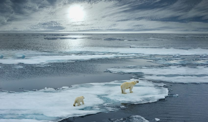 Scientists have discovered that the Arctic just experienced its warmest winter ever documented, causing sea ice to hit record lows.