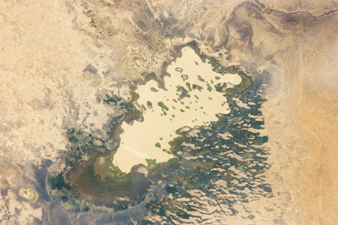 Today's Image of the Day comes from the NASA Earth Observatory and features a look at Lake Fitri located in the southern Sahara Desert in Chad.
