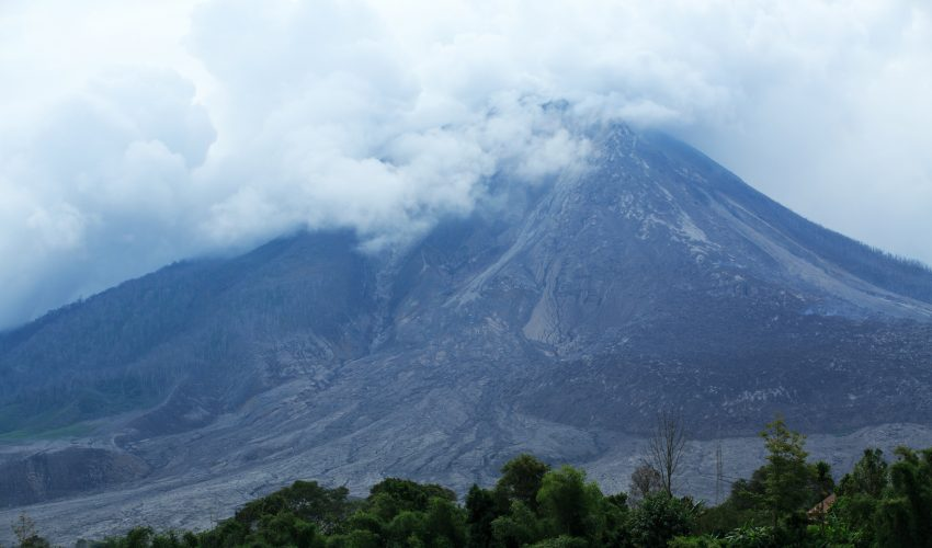 After the eruption of the super volcano Mount Toba in Indonesia 74,000 years ago, plants and trees were struggling but early humans were thriving.