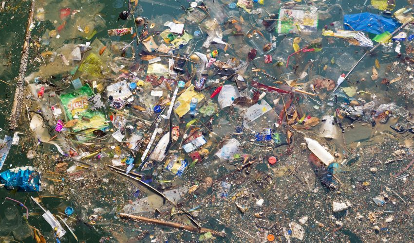 Image result for pacific garbage patch