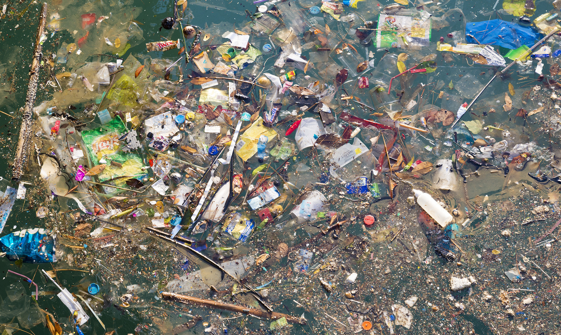 The Great Pacific Garbage Patch is now twice as big as ...
